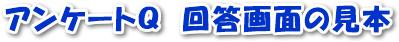 アンケートQの回答画面の見本